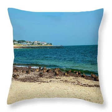 Throw Pillow featuring the photograph Birds On The Beach by Madeline Ellis