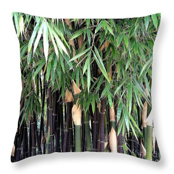 Black Bamboo Throw Pillow by Mary Deal