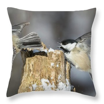 Throw Pillow featuring the photograph Black-capped Chickadee In Winter by Mircea Costina Photography