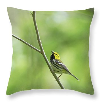 Black-throated Green Warbler Throw Pillow