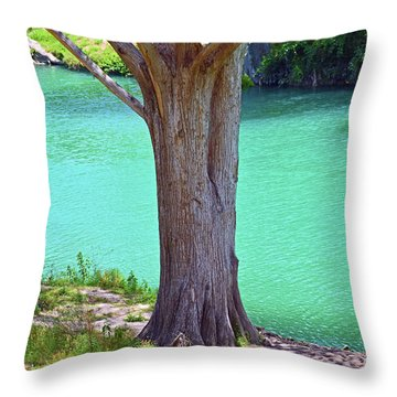 Blanco River Texas Throw Pillow by Ray Shrewsberry