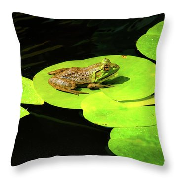 Blending In Throw Pillow by Greg Fortier
