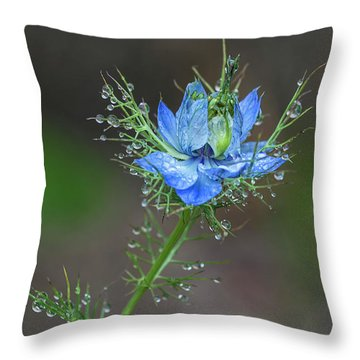 Throw Pillow featuring the photograph Blue Bloom On Weed Plant by Richard J Thompson
