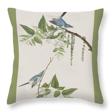 Blue Grey Flycatcher Throw Pillow