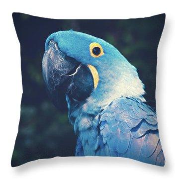 Blue Hyacinth Macaw Throw Pillow by Sharon Mau