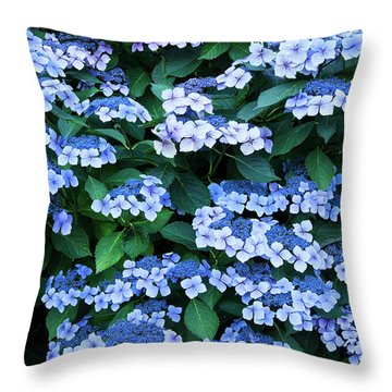 Miksang 12 Blue Hydrangea Throw Pillow by Theresa Tahara