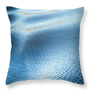 Blue On Blue Throw Pillow by Karen Wiles