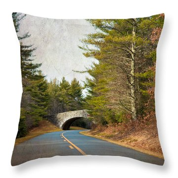 Throw Pillow featuring the photograph Blue Ridge Parkway by Ray Devlin
