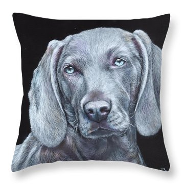 Blue Weimaraner Throw Pillow