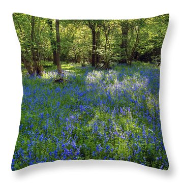 Bluebells In The New Forest Throw Pillow