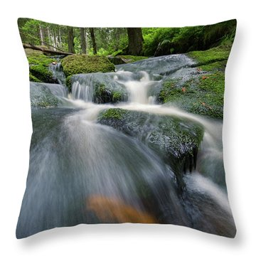 Bode, Harz Throw Pillow
