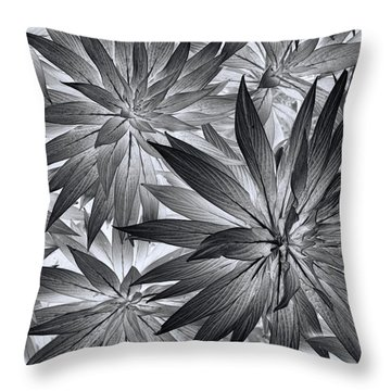 Throw Pillow featuring the photograph Botanical by Wayne Sherriff