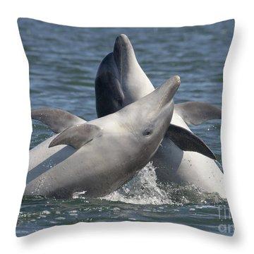 Bottlenose Dolphins  - Scotland  #15 Throw Pillow