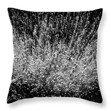 Boundless Joy Throw Pillow