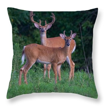 Buck Father And Son Throw Pillow