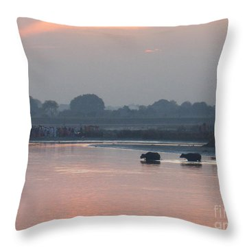 Throw Pillow featuring the photograph Buffalos Crossing The Yamuna River by Jean luc Comperat