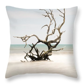 Bulls Island C-vi Throw Pillow