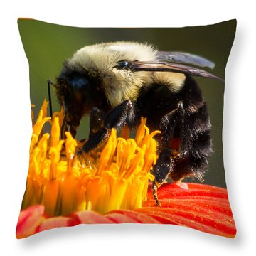 Throw Pillow featuring the photograph Bumble Bee by Willard Killough III