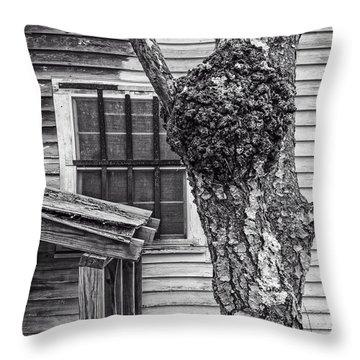 Burl And Window Throw Pillow