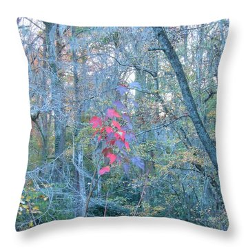 Burst Of Color Throw Pillow by Kay Gilley