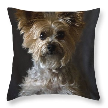 Buster Throw Pillow