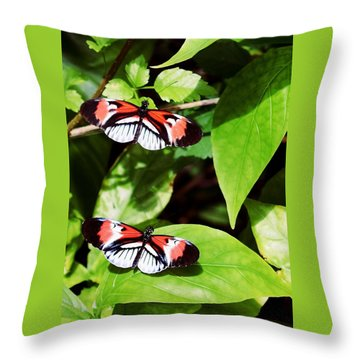 Butterflies Throw Pillow by Sandy Taylor