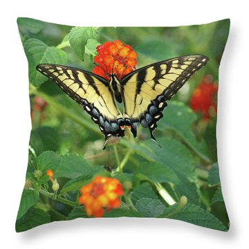 Butterfly And Flower Throw Pillow by Debra Crank