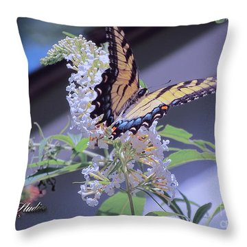 Butterfly Bush ,butterfly Included Throw Pillow by Melissa Messick