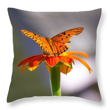 Throw Pillow featuring the photograph Butterfly On Flower by Willard Killough III