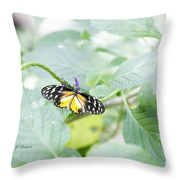 Throw Pillow featuring the photograph Tiger Butterfly by Richard J Thompson
