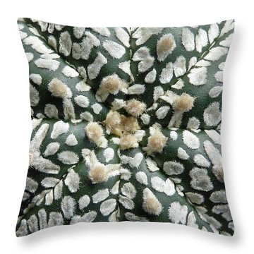 Cactus 1 Throw Pillow by Selena Boron