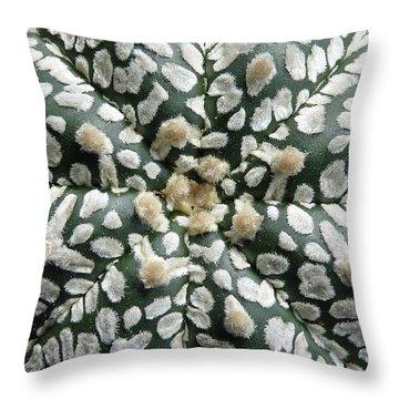 Cactus 1 Throw Pillow