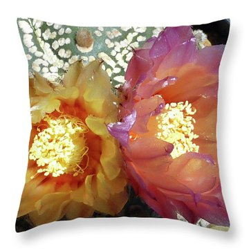 Cactus Flower 3 Throw Pillow by Selena Boron