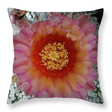 Cactus Flower 5 Throw Pillow by Selena Boron
