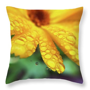 Calendula Officinalis Throw Pillow