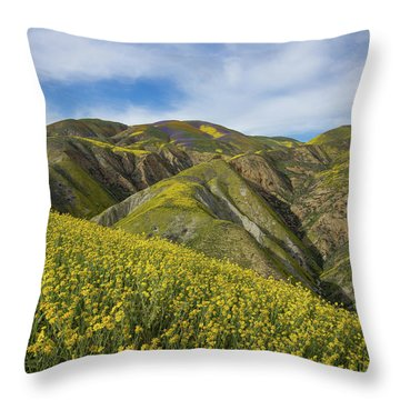 California Goldfields Adorn The Temblor Range Throw Pillow