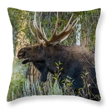 Calling All His Girls Throw Pillow by Yeates Photography