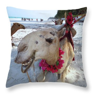 Camel On Beach Kenya Wedding3 Throw Pillow