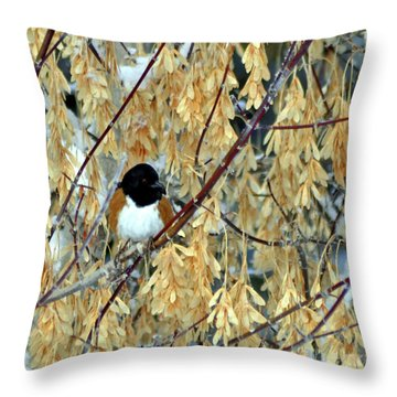 Throw Pillow featuring the photograph Camouflage by Juls Adams