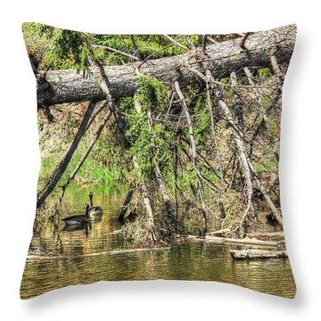 Canada Geese Throw Pillow by Jim Sauchyn