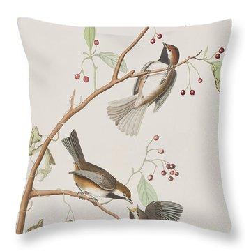 Canadian Titmouse Throw Pillow