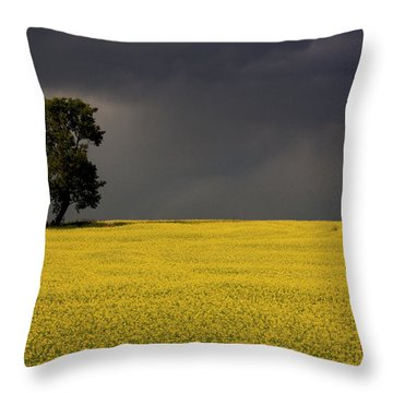 Canola Storm Throw Pillow