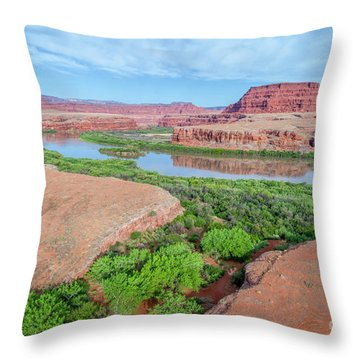 Canyon Of Colorado River In Utah Aerial View Throw Pillow