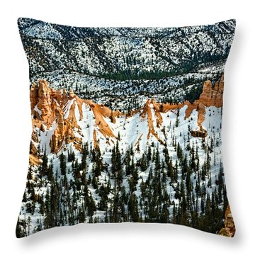 Canyon View Throw Pillow by Christopher Holmes
