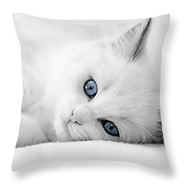 Cat Collection Throw Pillow by Marvin Blaine