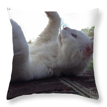cat Throw Pillow by Mary Tron