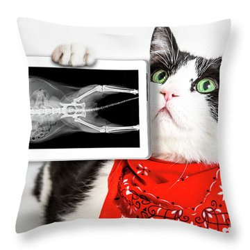 Cat With X Ray Plate Throw Pillow