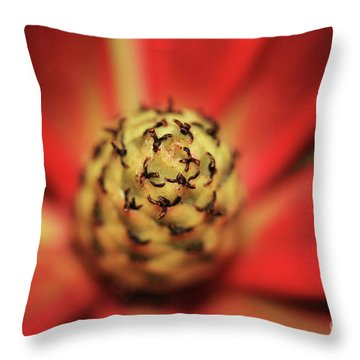 Throw Pillow featuring the photograph Centrifugal by Stephen Mitchell