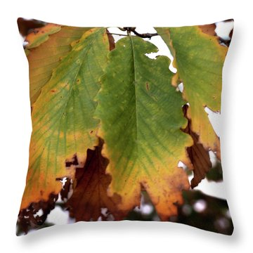 Changing Leaves Throw Pillow