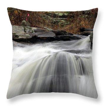 Chapman Falls 3 Throw Pillow